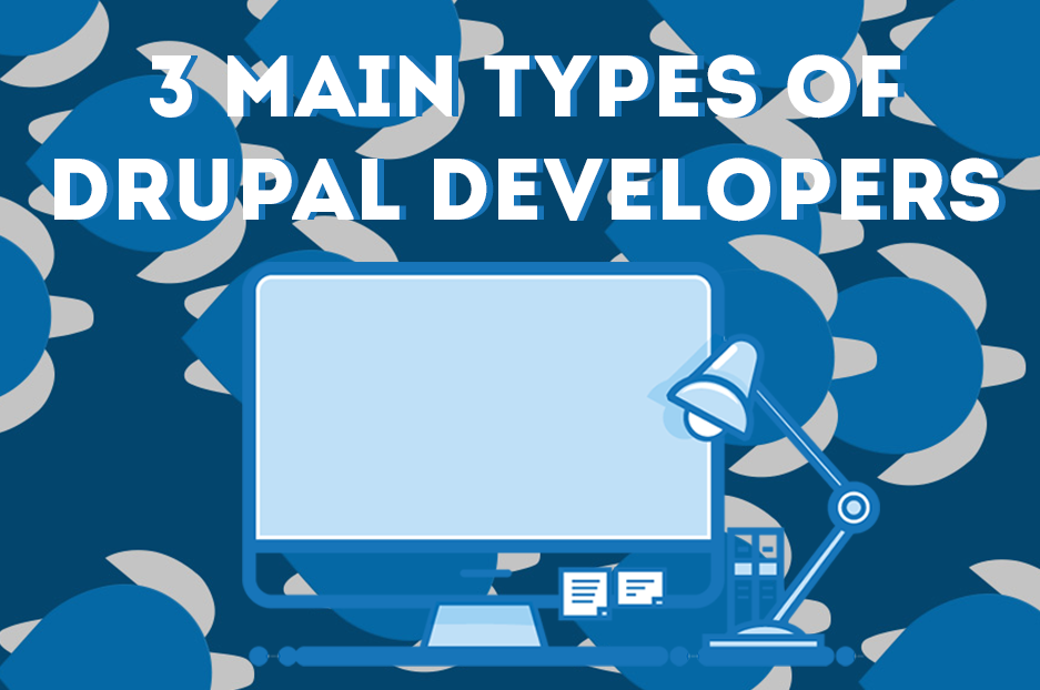 What type of Drupal developer do you need for your project?