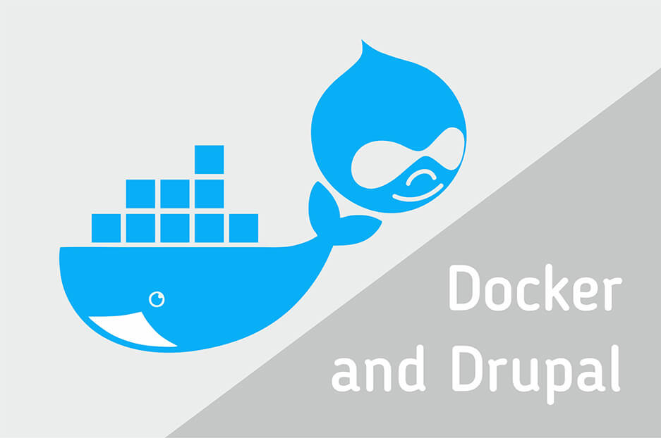Dockerize it, or why use Docker in Drupal development