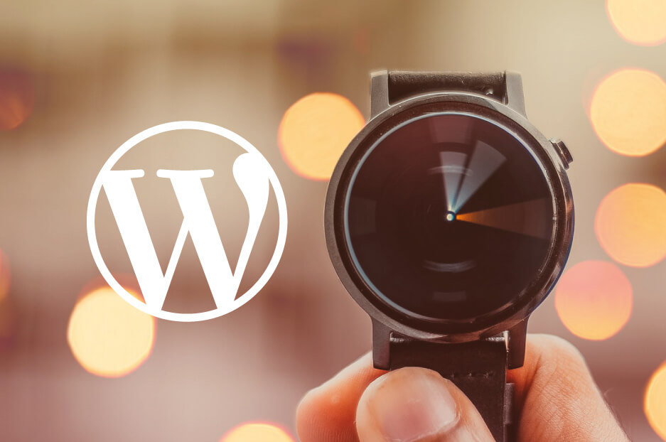 Speed Up your WordPress Website Performance