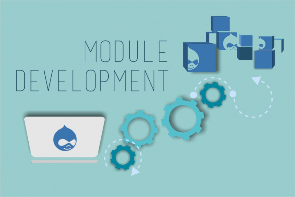 Drupal module development services: unique features for your unique website